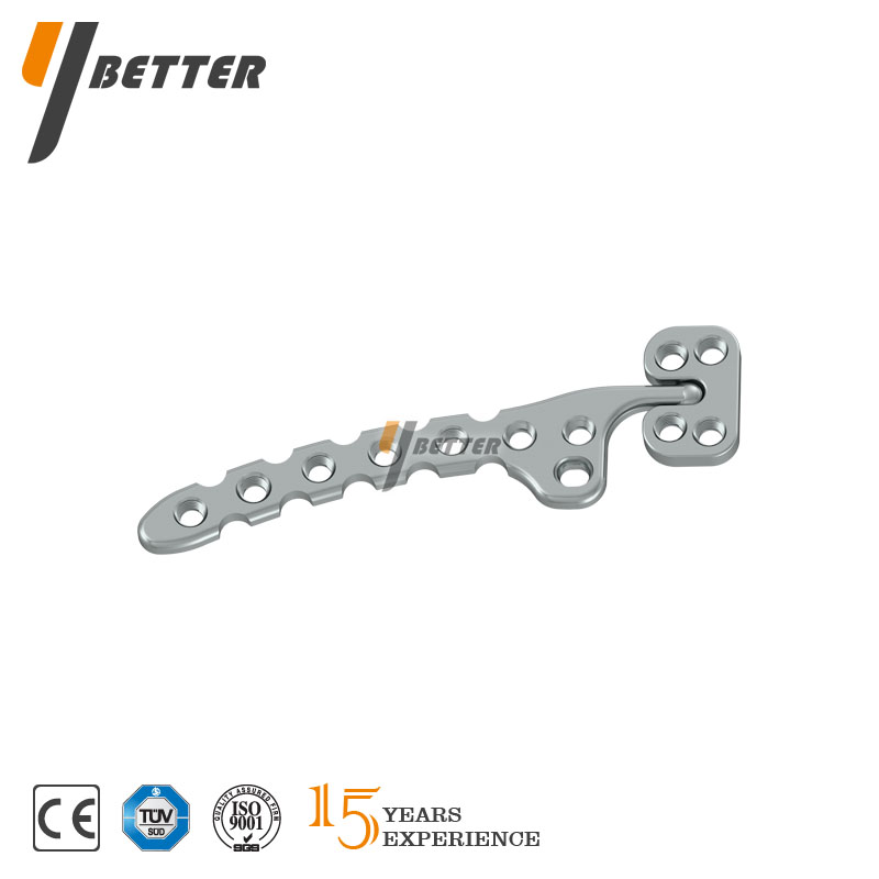 Clavicle Hook Combined Locking Plate