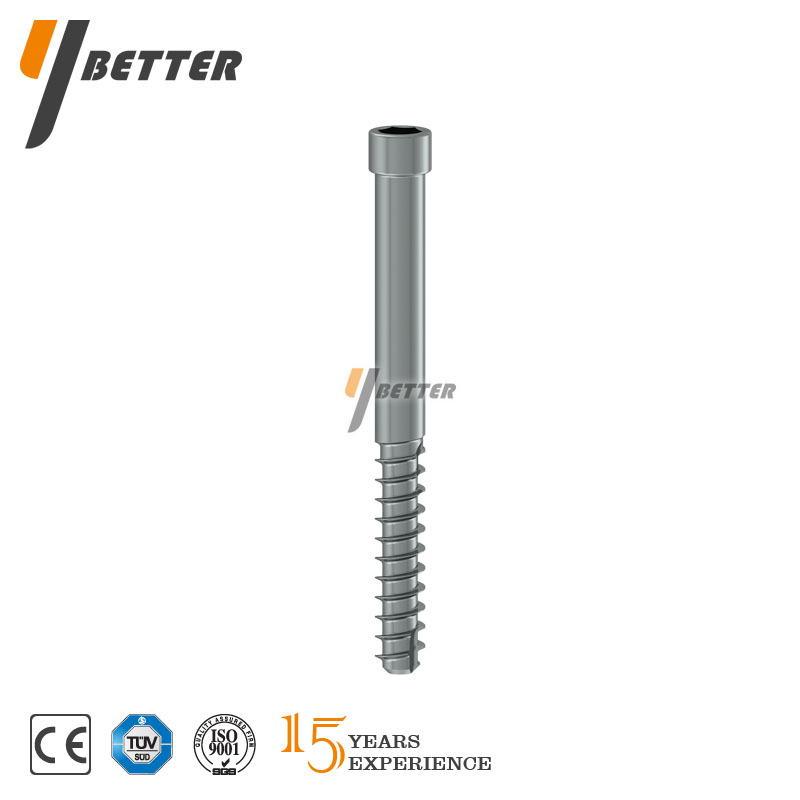 Proximal Locking Screw (Cannulated)
