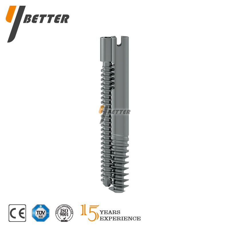 Proximal Locking Screw